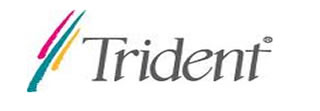 Free Trident Drivers Download